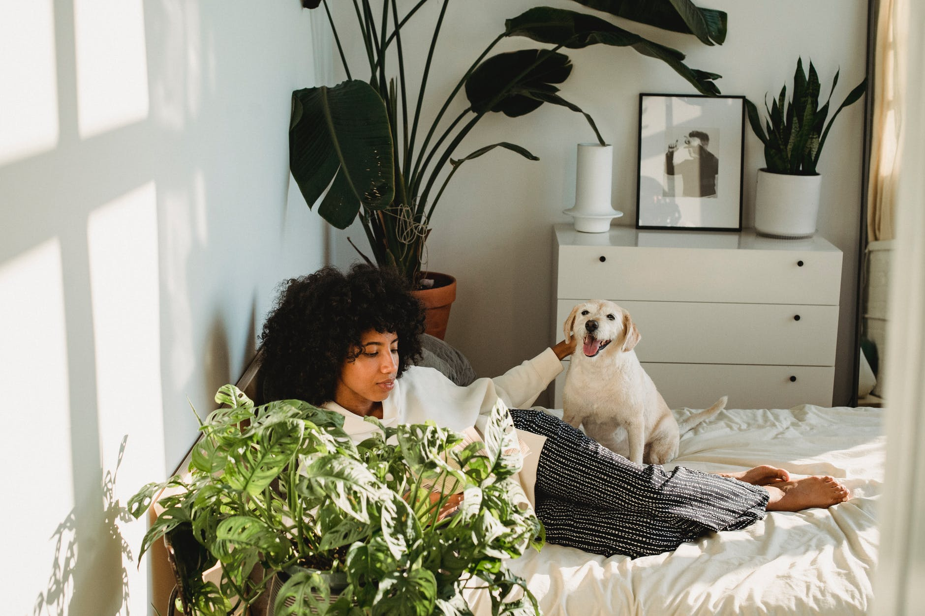 young black lady lying on bed with dog and reading book